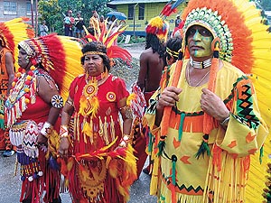 Trinidad u0026 Tobago Traditional Carnival Characters